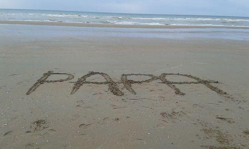 Photo_blog_papa